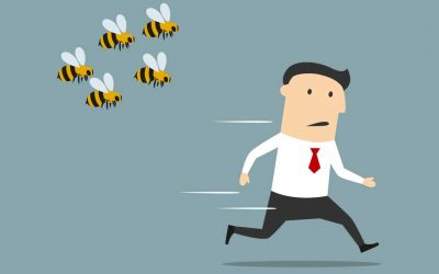 Avoid getting stung by bad developers